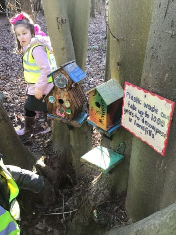 Reception Class visit to the Fairy Forest, Lichfield