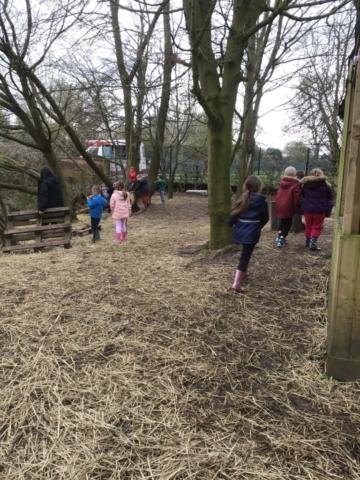 forest school photos