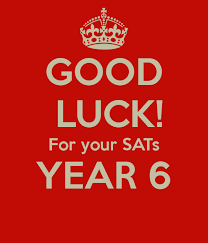 Good Luck Poster for Year 6
